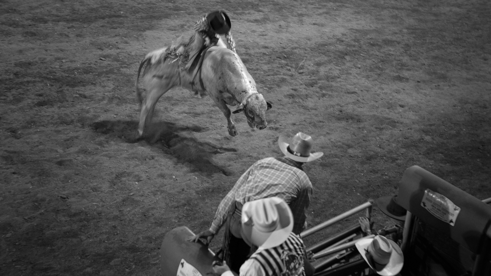 michaelpauljones_rodeo3