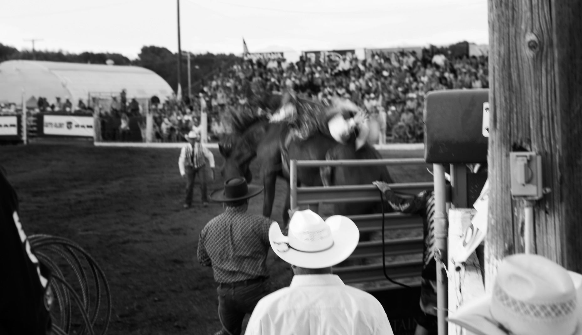 michaelpauljones_rodeo37