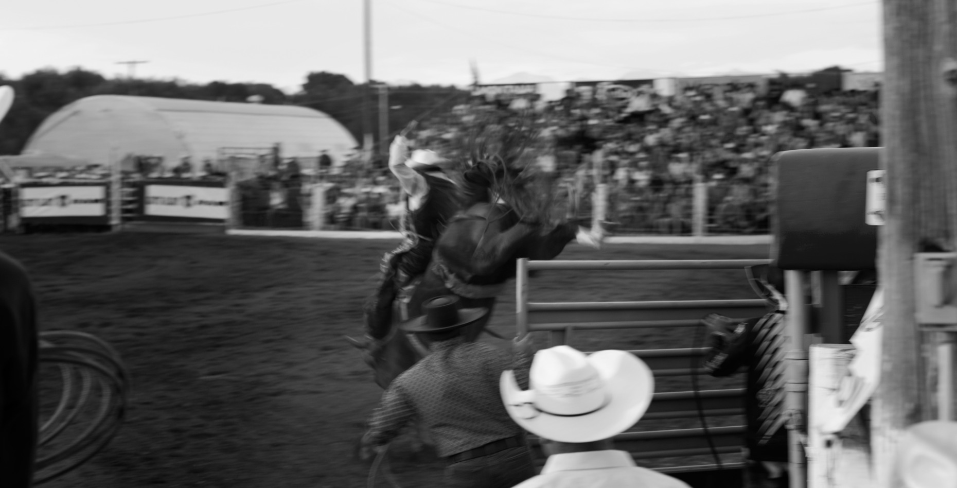 michaelpauljones_rodeo48